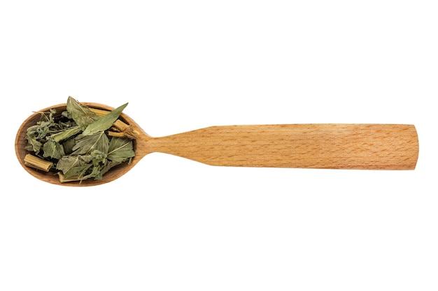 Galega officinalis essiccato in un cucchiaio di legno su uno sfondo bianco.