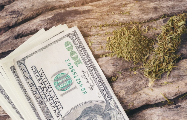 Marijuana medica secca con banconote da un dollaro