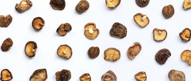 Funghi shiitake secchi su sfondo bianco.