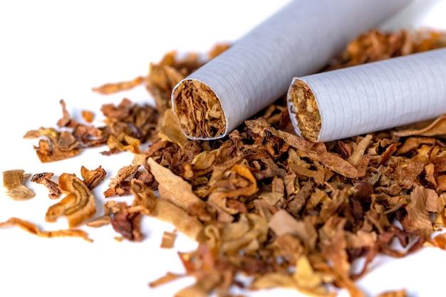 Tabacco da fumo essiccato isolato su uno sfondo bianco