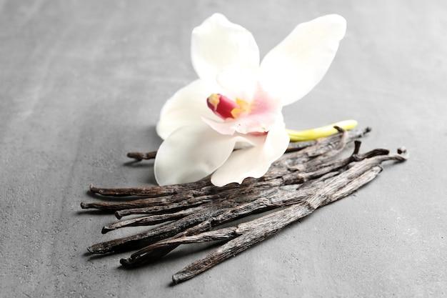 Bastoncini di vaniglia essiccati e fiore su struttura grigia