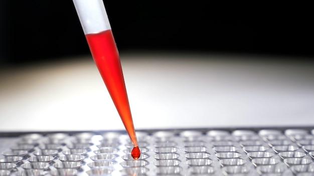 Campioni di sangue gocciolanti in primo piano delle provette