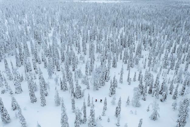 Colpo di drone di persone che fanno trekking in una foresta innevata in lapponia, finlandia