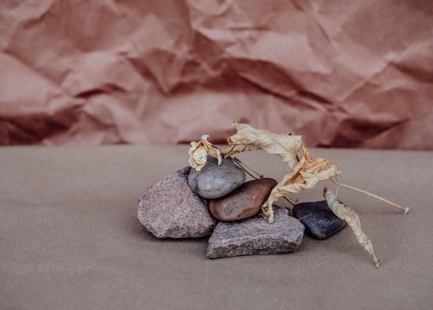 Foglia secca autunnale sulle rocce. il concetto di wabi sabi. sfondo artigianale