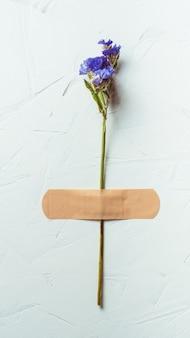 Fiore blu secco con nastro adesivo su superficie di cemento bianco, verticale