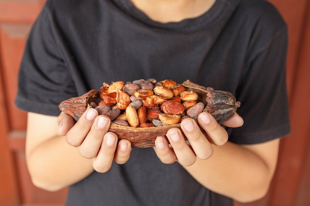 Fave di cacao secche a portata di mano