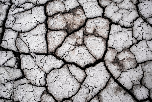 Terra incrinata asciutta come struttura della superficie della crepa del modello della fiamma piena del fondo del primo piano del fondo