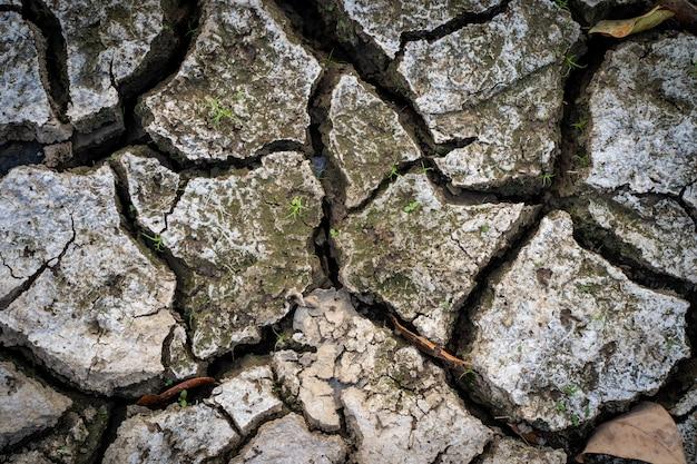 Terreno asciutto e rotto durante la calura estiva.