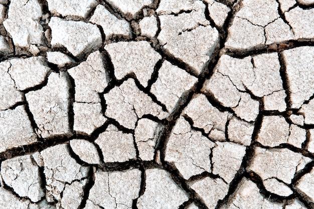 Concetto di siccità del concetto di riscaldamento globale a terra secca e screpolata