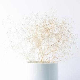 Fiori secchi delicati in un vaso su uno sfondo bianco.