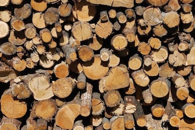 Una catasta di legna da ardere secca