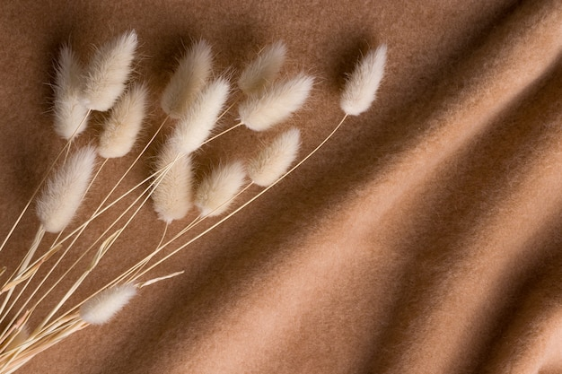 Fiori secchi su un caldo tessuto di lana marrone. sfondo