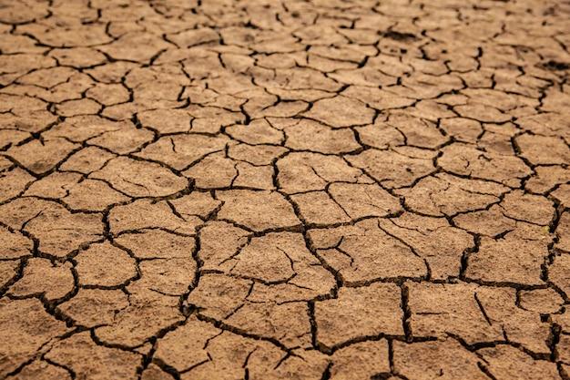 Terra asciutta senza acqua vicino al concetto di riscaldamento globale
