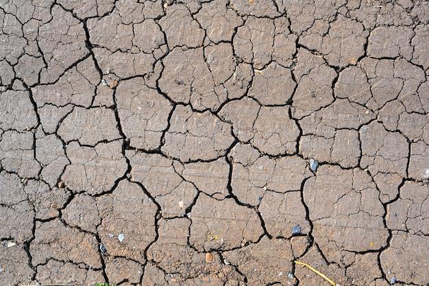 Trama al suolo incrinata fango secco. sfondo stagione di siccità. terreno secco e screpolato, arido per mancanza di pioggia. effetti dei cambiamenti climatici come desertificazione e siccità.