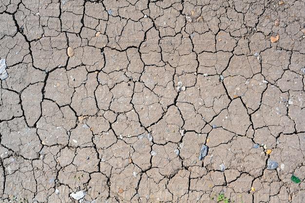 Trama al suolo incrinata fango secco. sfondo stagione di siccità. terreno secco e screpolato, arido per mancanza di pioggia. effetti del cambiamento climatico.