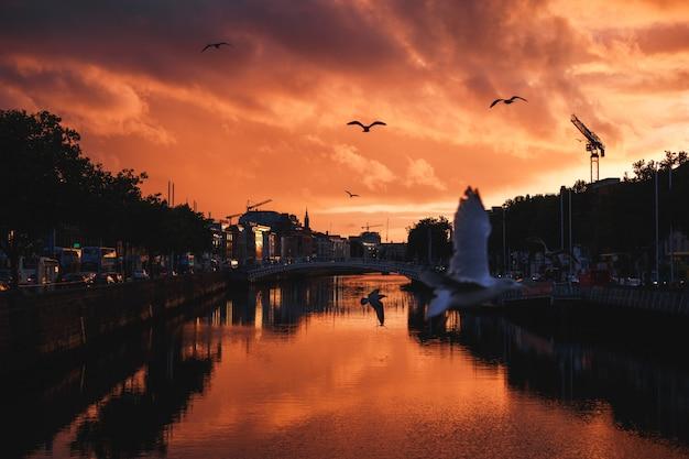 Il paesaggio urbano di dublino durante un colorato tramonto con nuvole e gabbiani sul fiume liffey
