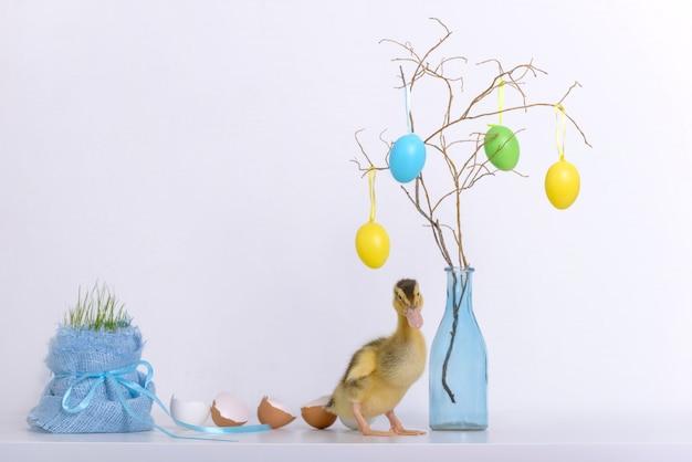 Anatroccolo e coperture delle uova e decorazione di pasqua