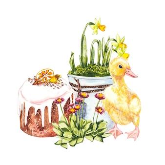 Illustrazione dell'acquerello di anatroccolo