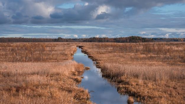 Condotto in boschetti nella riserva naturale dei laghi di gamberi di fiume nella regione di leningrado in autunno