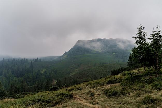 Crepuscolo in montagna prima di una tempesta e un temporale in una giornata piovosa e nebbiosa