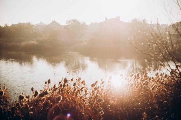 Mattina presto. lago d'autunno bello e colorato nei raggi del sole. sfondo autunnale.