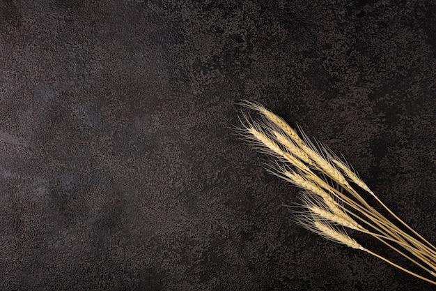 Spighe di grano sulla trama di sfondo nero. copyspace. vista dall'alto