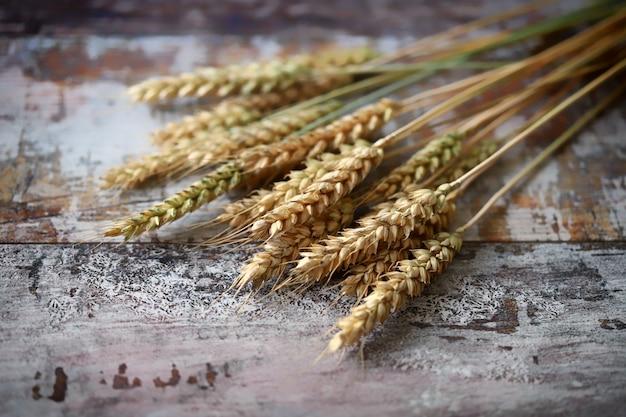 Spighe di grano
