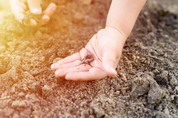 Un lombrico nelle mani dei bambini in primavera in giardino. bagliore