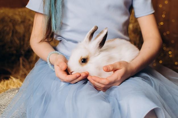 Primo piano del coniglietto di pasqua una ragazza in un vestito blu sta accarezzando un coniglio