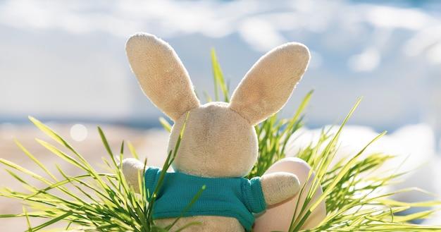 Il coniglietto di pasqua si siede nell'erba con un uovo di pasqua. sfondo blu. caccia alle uova