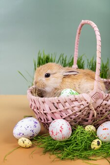 Biglietto di pasqua - un piccolo coniglietto decorativo allo zenzero in un cesto di vimini rosa con uova di pasqua dipinte.