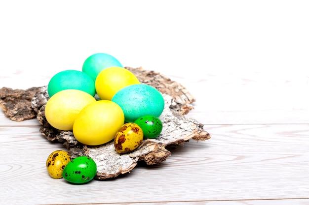 Pasqua uova dipinte colorate sulla corteccia di albero, primavera, cibo, concetto di pasqua su fondo bianco di legno