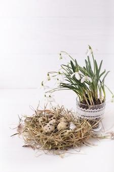 Composizione di pasqua con fiori bucaneve e un piccolo nido con uova di quaglia su un tavolo di legno bianco