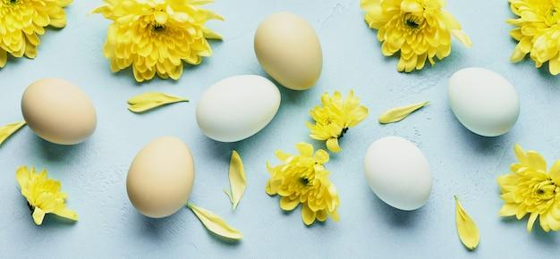 Concetto di pasqua. uova e fiori di crisantemi gialli sul tavolo blu. vista dall'alto.