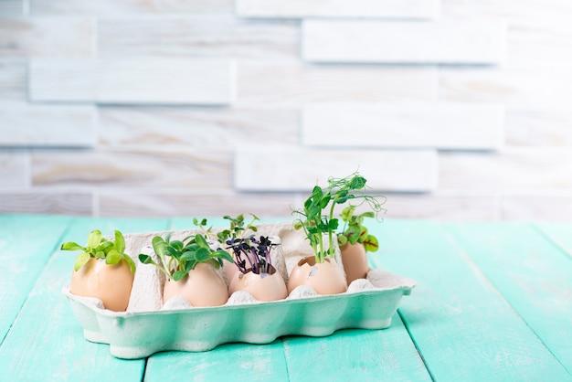 Decorazioni di pasqua di gusci d'uovo e microgreens su un tavolo da cucina vintage verde