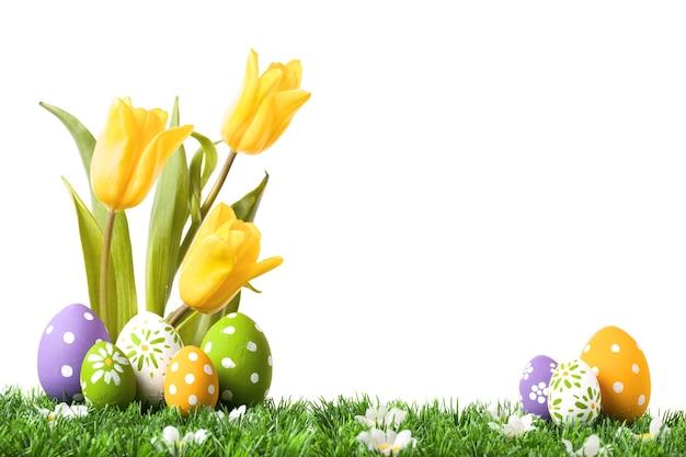 Uova di pasqua che si nascondono nell'erba con i tulipani isolati su bianco