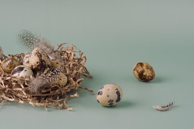 Nido di pasqua fatto di fieno con uova di quaglia e piume su sfondo blu, primo piano. composizione pasquale in colori pastello. sfondo di pasqua naturale, layout creativo.