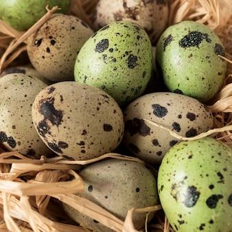 Primo piano delle uova di quaglia di pasqua