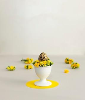 Pasqua in colori alla moda. uovo di quaglia con fiori di primavera su uno sfondo giallo e grigio con spazio di copia.