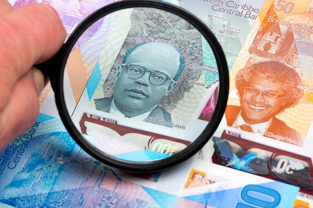 Soldi dei caraibi orientali - dollari in una lente d'ingrandimento