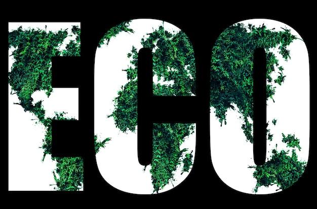 Eco logo da foglie verdi isolato su sfondo nero. concetto di protezione dell'ambiente.