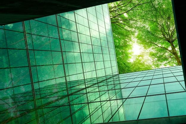 Edificio ecologico nella città moderna rami di alberi verdi con foglie ed edifici sostenibili