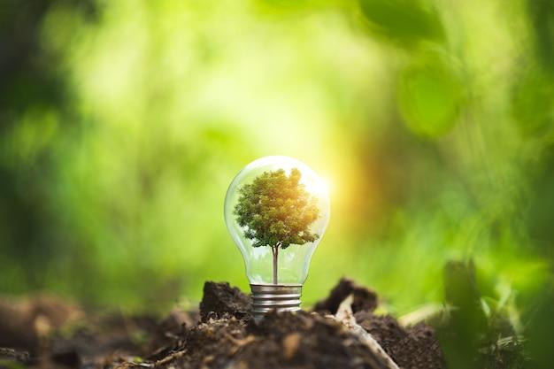 Concetto di ecologia. lampadina incandescente sul suolo. simbolo.