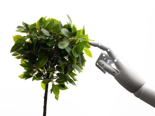 Concetto di tecnologia ecologica con braccio robotico con foglie verdi isolate su bianco