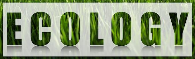 Parola di ecologia sulla bandiera bianca sullo sfondo dell'erba verde.