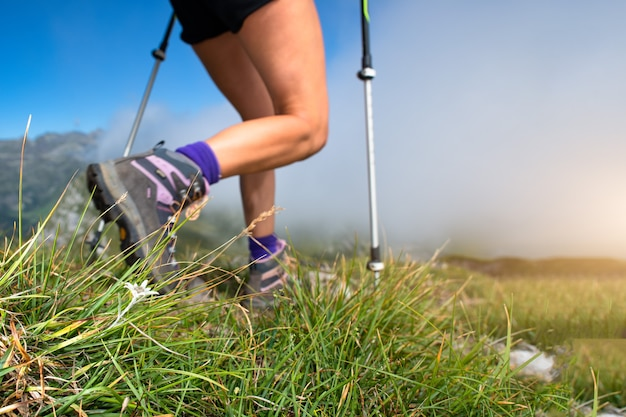 Un fiore di stella alpina con il passaggio di una donna che cammina nordica in montagna