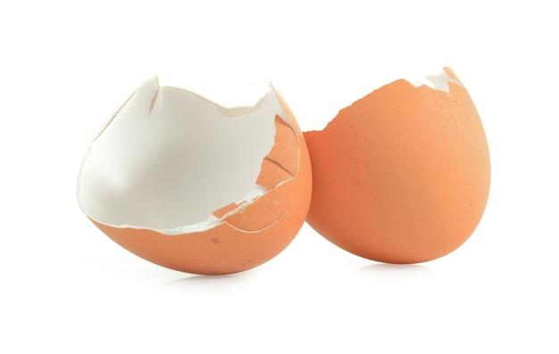 Guscio d'uovo su sfondo bianco