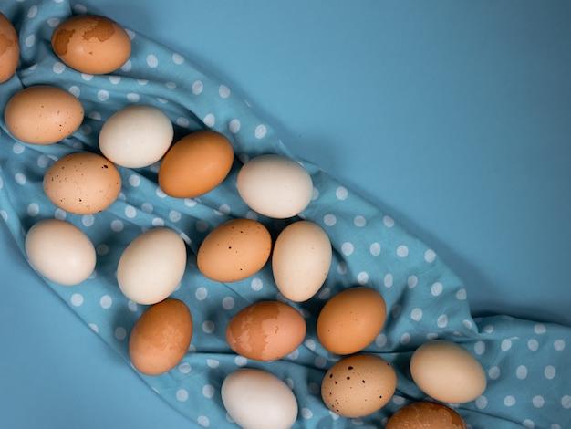 Uova su una priorità bassa blu, primo piano.