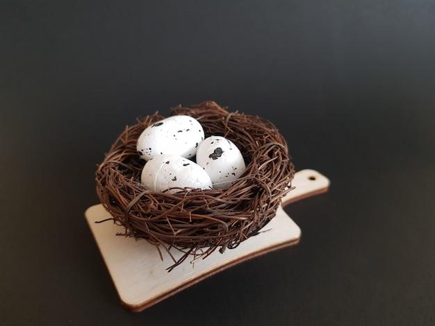 Uova in un nido di rami su sfondo nero isolato