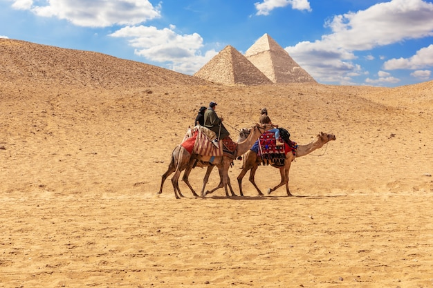 Uomini egiziani sui cammelli nelle sabbie di giza vicino alle piramidi.